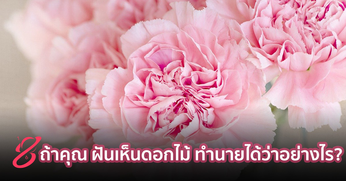 ถ้าคุณ ฝันเห็นดอกไม้ ทำนายได้ว่าอย่างไร?