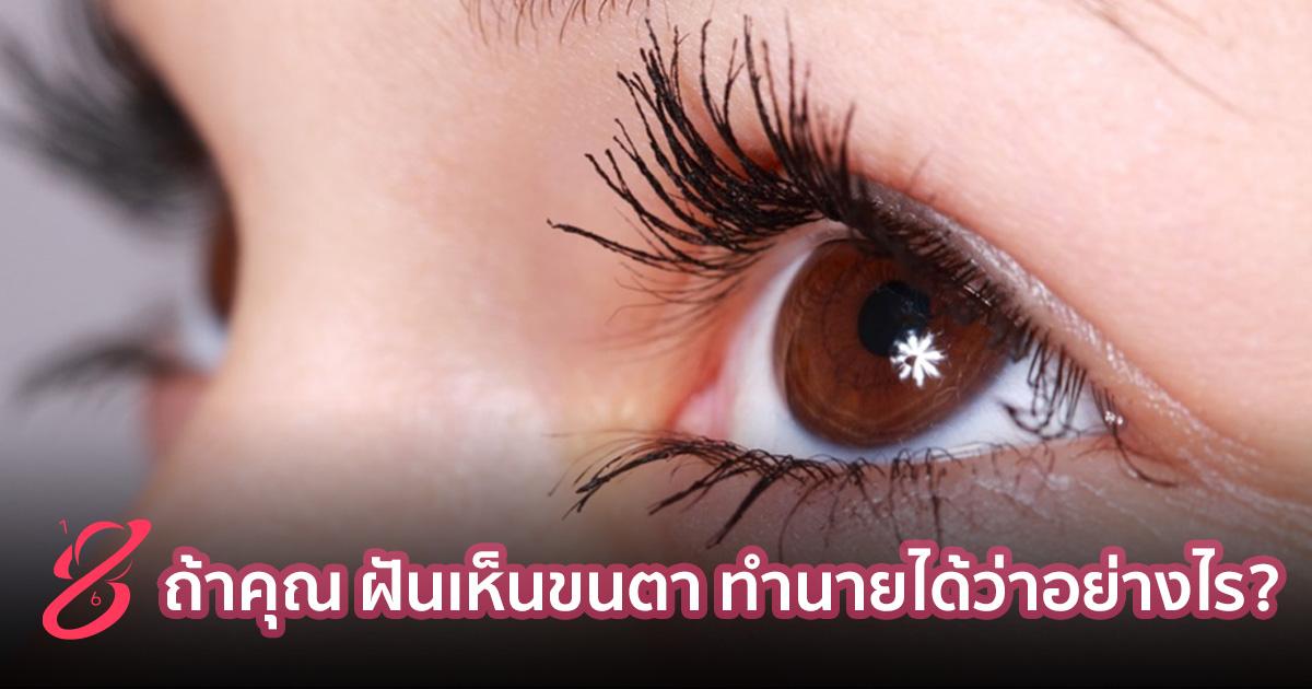 ถ้าคุณ ฝันเห็นขนตา ทำนายได้ว่าอย่างไร?
