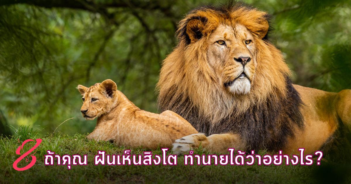 ถ้าคุณ ฝันเห็นสิงโต ทำนายได้ว่าอย่างไร?
